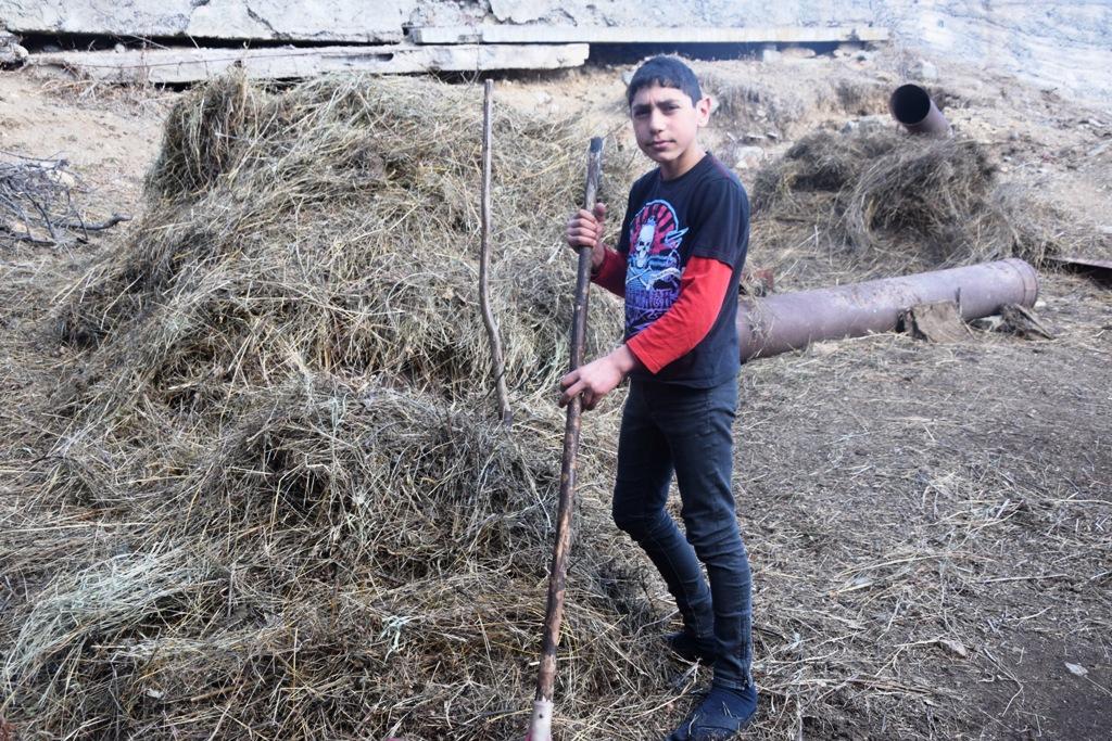 Boy working in hay